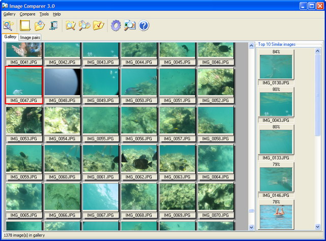 Image Comparer gallery view snapshot